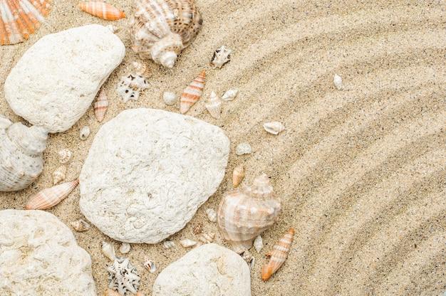 Superficie della sabbia di mare pietre conchiglie estate concetto copia spazio