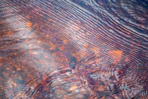 La superficie del ruscello contenente acqua. l'acqua è marrone grazie alla torba.