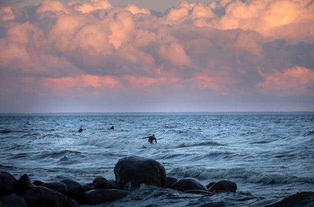 Surfisti sul mare del nord al tramonto