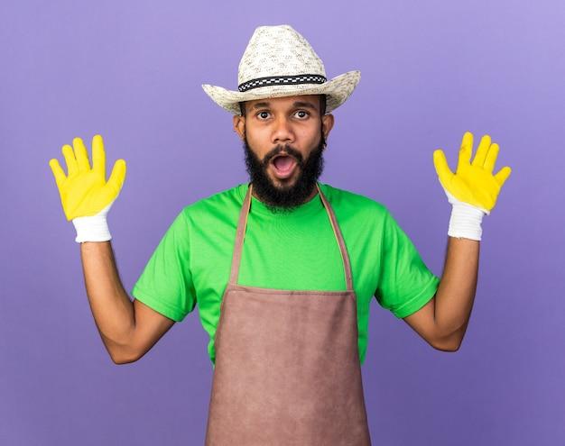 Sorpreso giovane giardiniere afroamericano che indossa un cappello da giardinaggio con guanti che alzano le mani isolate sul muro blu