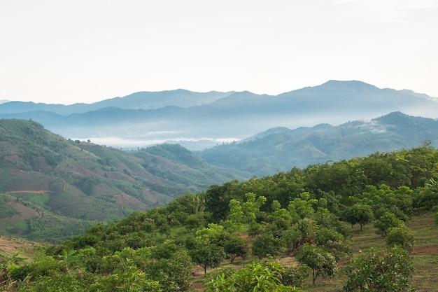 Paesaggio surreale di nebbia mattutina..nuvole mattutine all'alba.paesaggio di nebbia e montagne del laos settentrionale.