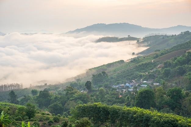 Paesaggio surreale di nebbia mattutina..nuvole mattutine all'alba.paesaggio di nebbia e montagne del nord della thailandia.