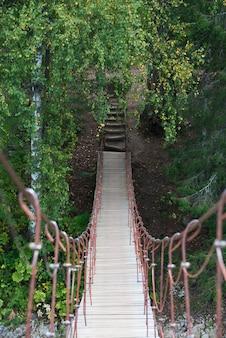 Ponte sospeso attraverso il fiume nella foresta