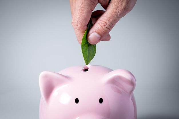 Sostenibilità e concetto di business verde