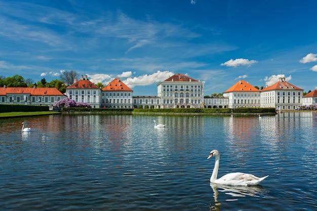 Swan in stagno vicino al palazzo di nymphenburg monaco di baviera baviera germania