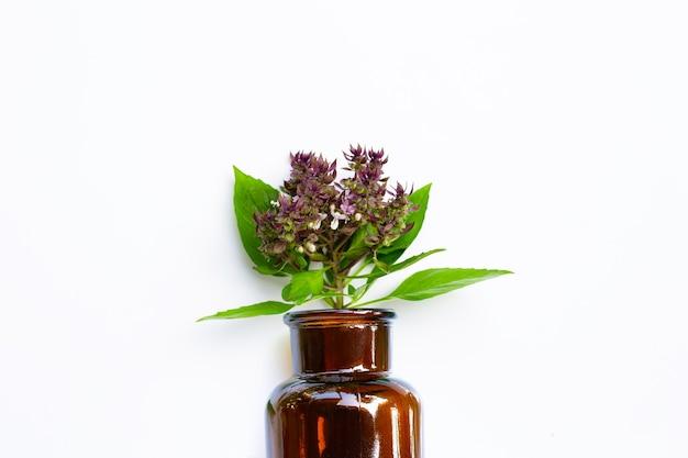 Fiore di basilico dolce in bottiglia di medicina su bianco isolato.