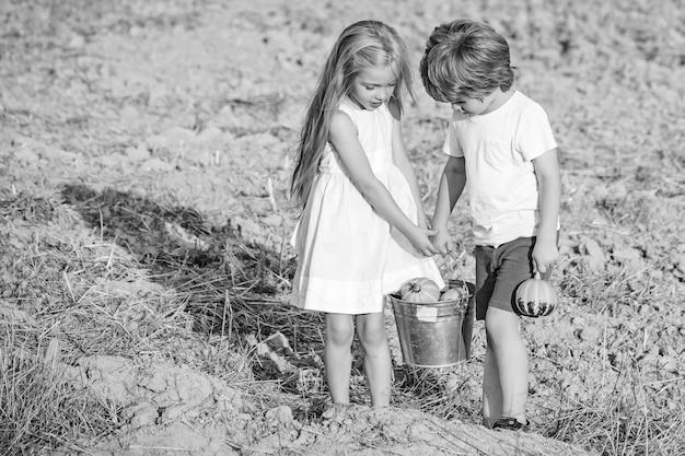Dolce infanzia. infanzia in campagna. piccoli agricoltori felici divertendosi sul campo. concetto di ecologia