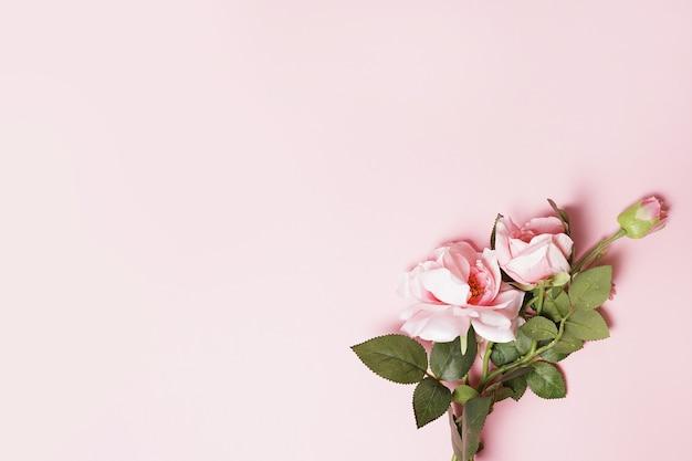 Rose di colore dolce in stile morbido su sfondo rosa, biglietto di auguri