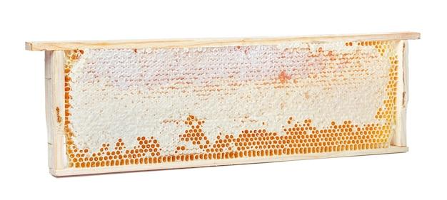 Dolce a nido d'ape isolato su bianco