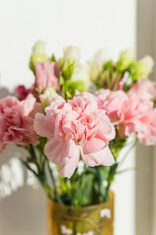 Fiori di garofano rosa dolce in vaso su uno sfondo bianco con lo spazio del testo. bellissimi garofani teneri fioritura fresca. festa della mamma, grazie concetto di design.