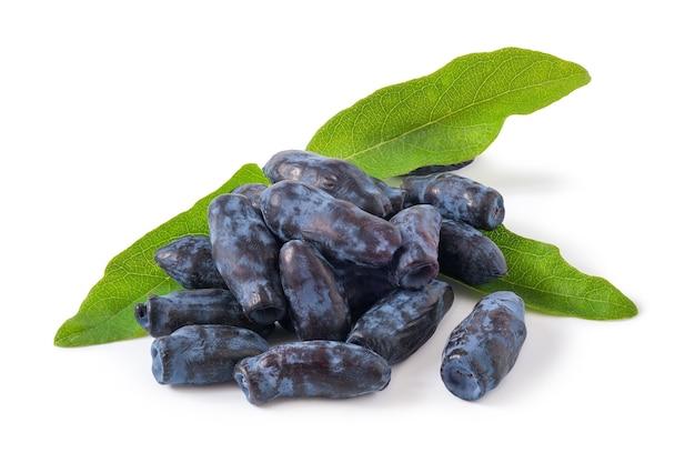 Caprifoglio sweetberry con foglie isolate