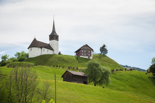 Castello della svizzera