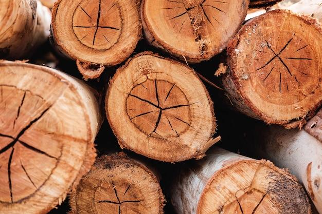 La trama della tabella dell'albero tagliato