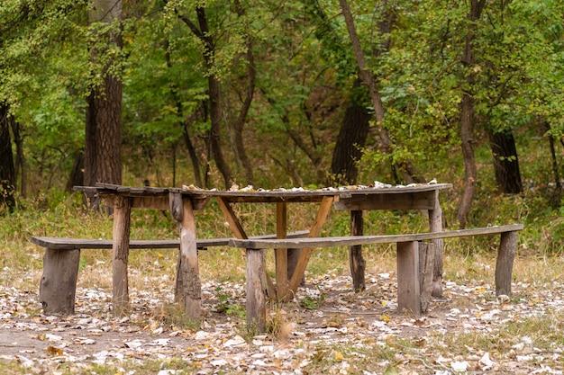 Un tavolo e due panche da una casa di tronchi grezzi.
