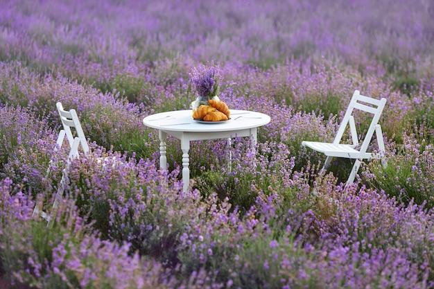 Tavolo con croissant e sedie in campo di lavanda