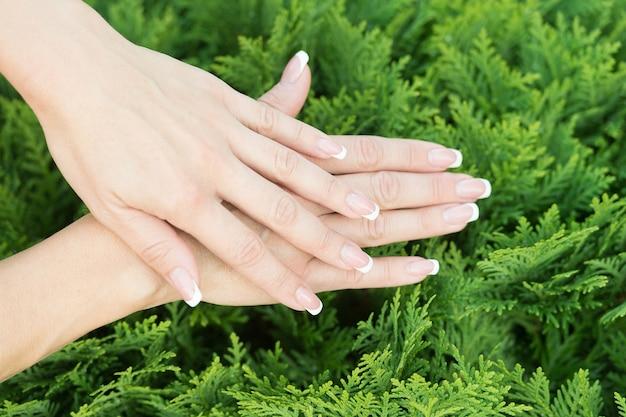 Prenditi cura delle tue mani mani femminili con french manicure su sfondo naturale