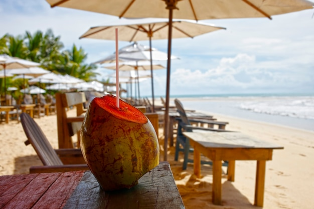 Prendendo il cocco verde sulla spiaggia di porto seguro, trancoso, brazil