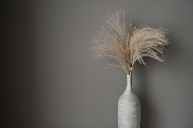 Canne abbronzate, bouquet di erba di pampa in vaso di argilla su grigio