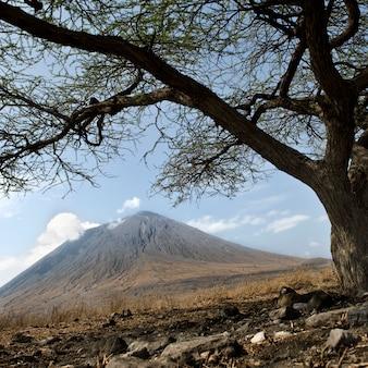 Vulcano tanzani, ol doinyo lengai, tanzania, africa