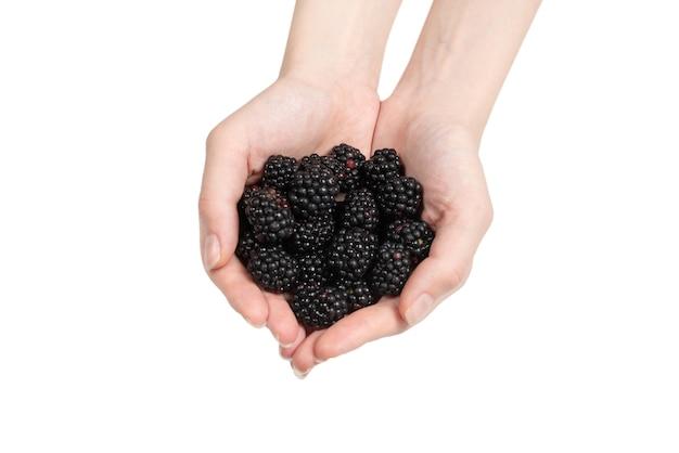 Blackberry gustoso tenuto in mano isolato su sfondo bianco. vista dall'alto.