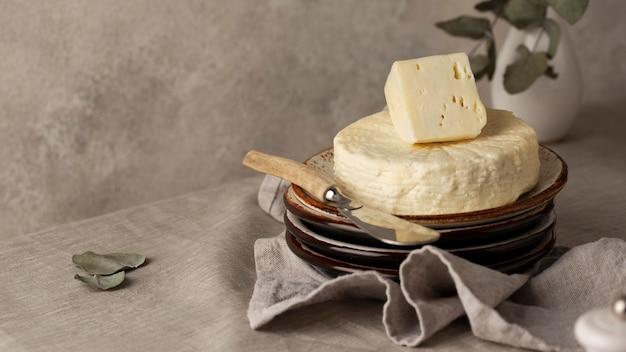 Gustosa composizione di formaggio paneer