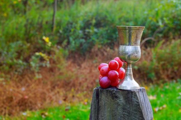 Vino saporito sul barilotto di legno sul fondo della piantagione di uva