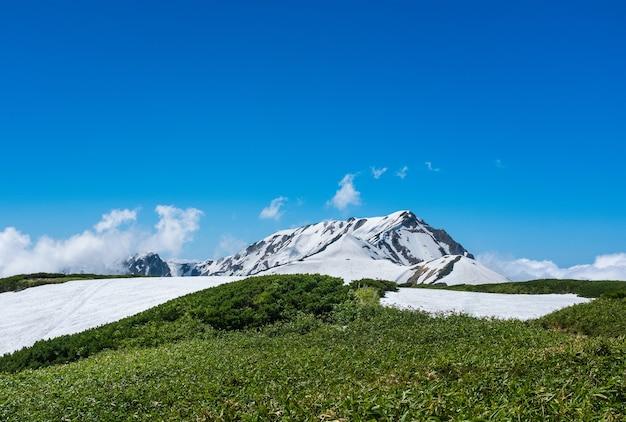 Tateyama, giappone - 11 giugno 2017: alpi del giappone con neve che si scioglie. il percorso alpino tateyama kurobe, attivo da fine aprile a novembre, è una delle attrazioni turistiche del giappone.