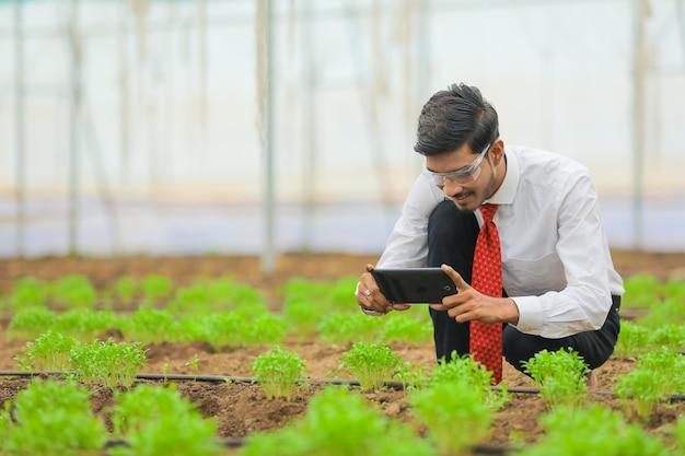 Concetto di tecnologia e persone, giovane agronomo indiano utilizzando tablet o smartphone in serra
