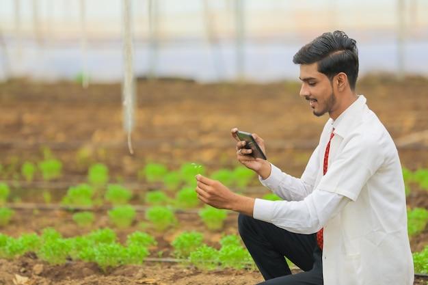 Concetto di tecnologia e persone, giovane agronomo indiano con tavoletta in serra