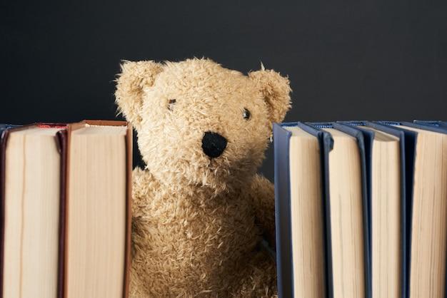 Orsacchiotto che dà una occhiata da dietro una pila di libri
