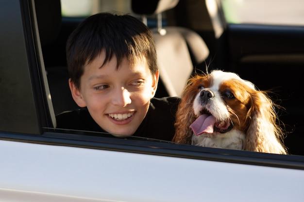 Ragazzo adolescente sorridente guardando attraverso il finestrino della sua auto con il suo cane cavalier king charles spaniel, sognando di andare in viaggio