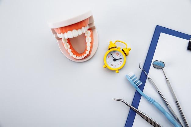 Concetto di igiene dei denti. modello di dente con strumento dentale nell'ufficio del dentista