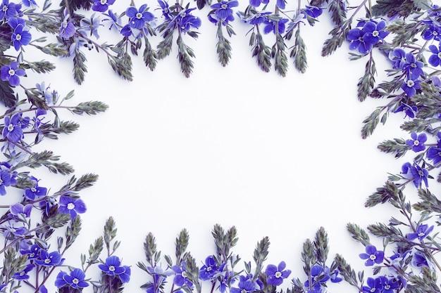 Modello sotto forma di cornice di delicati fiori di campo in blu su sfondo bianco