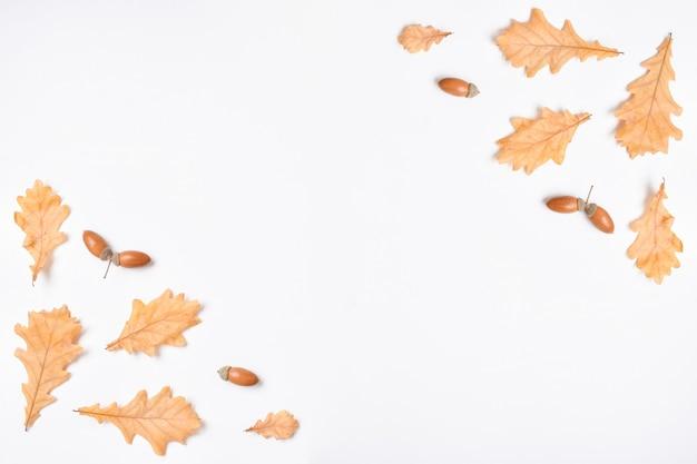 Il modello è una cornice su uno sfondo bianco con vari oggetti naturali. cartolina d'autunno con foglie di quercia e ghiande. layout piatto, vista dall'alto, un posto da copiare.