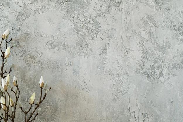 Ramo tenero che si rompe in fiore contro il fondo grigio della parete dello stucco normale. arredamento naturale minimo