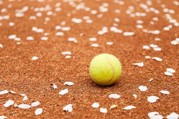Palla da tennis su un campo in terra battuta. campo da tennis vicino a melo in fiore con petali a terra. gioco di tennis
