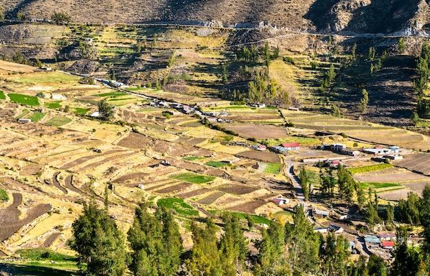 Campi terrazzati a huambo vicino al canyon del colca in perù