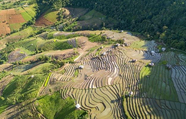 Campo di riso terrazzato a mae cham chiangmai nel nord della thailandia