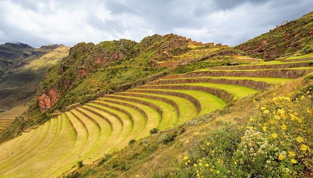 Terrazze, fiori e antico villaggio incas picas. perù. sud america