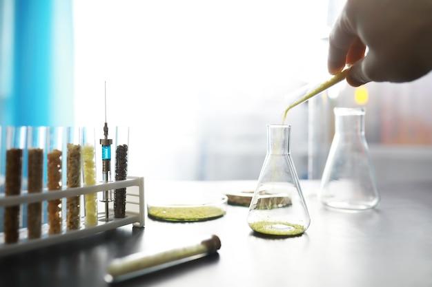 Provette con semi di piante di selezione. ricerca analizzando cereali e semi agricoli in laboratorio