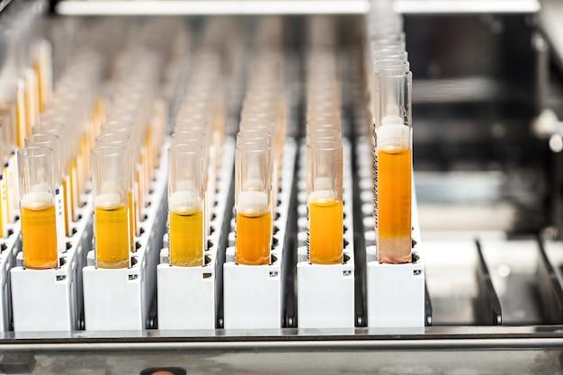 Provette con liquido giallo in laboratorio