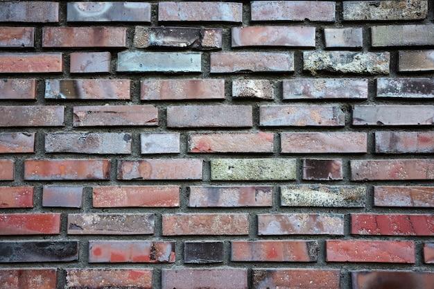 La trama del muro di mattoni, mattoni, mattoni