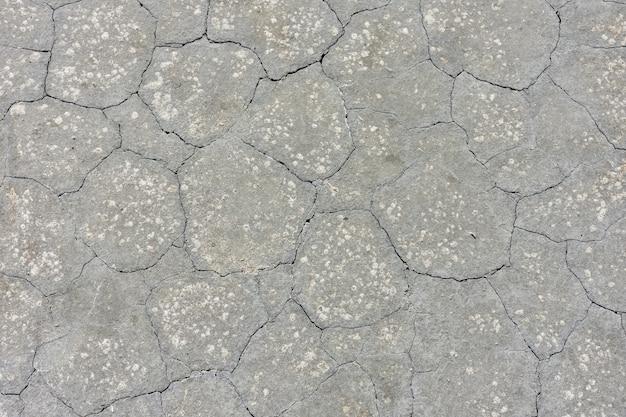 Texture di fango grigio essiccato, terra secca