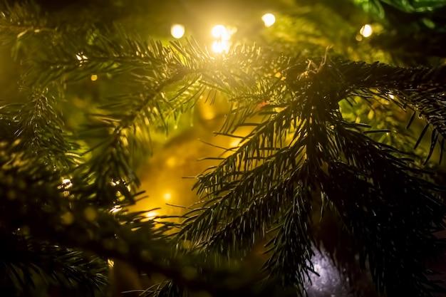 Trama di abete ramo con luci. un frammento di capodanno e albero di natale. primo piano, messa a fuoco morbida, sfocatura dello sfondo
