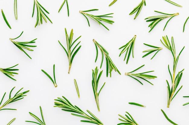 Texture di foglie di rosmarino verde, appena tagliate (rosmarinus officinalis). ingrediente isolato di cucina mediterranea e rimedio casalingo curativo.
