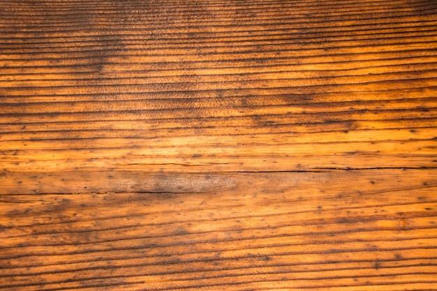 La trama del vecchio pino. struttura di legno.