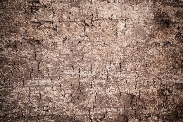 Texture legno vecchio sfondo. Foto Premium