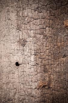 Texture legno vecchio sfondo.