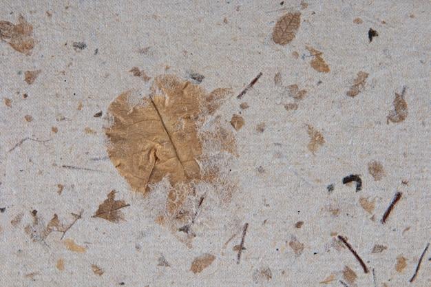 Texture di carta fatta a mano riciclata con foglie.