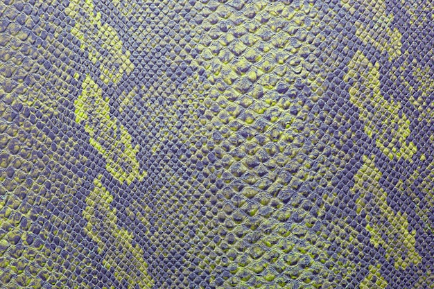 Consistenza della pelle di serpente in colori vivaci